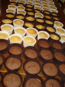Chocolate, Vanilla and Lemon cupcakes
