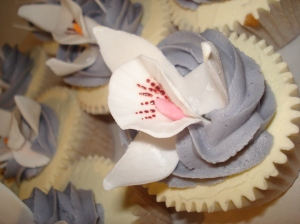 Cupcake and an orchid